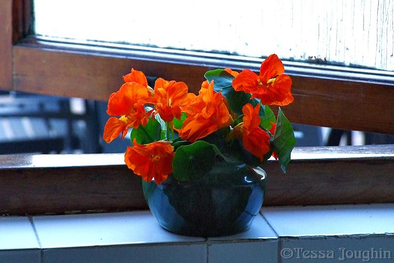 Welcoming flowers in the bathroom