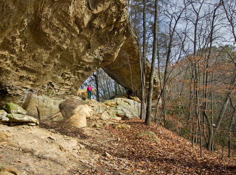 Slade West Twin Arch