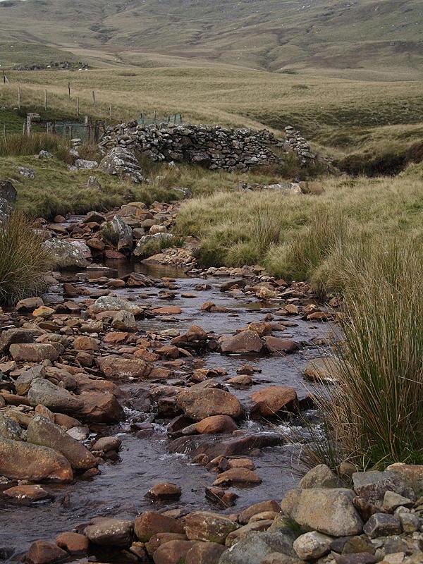 Afon Llafar and Sheepfold