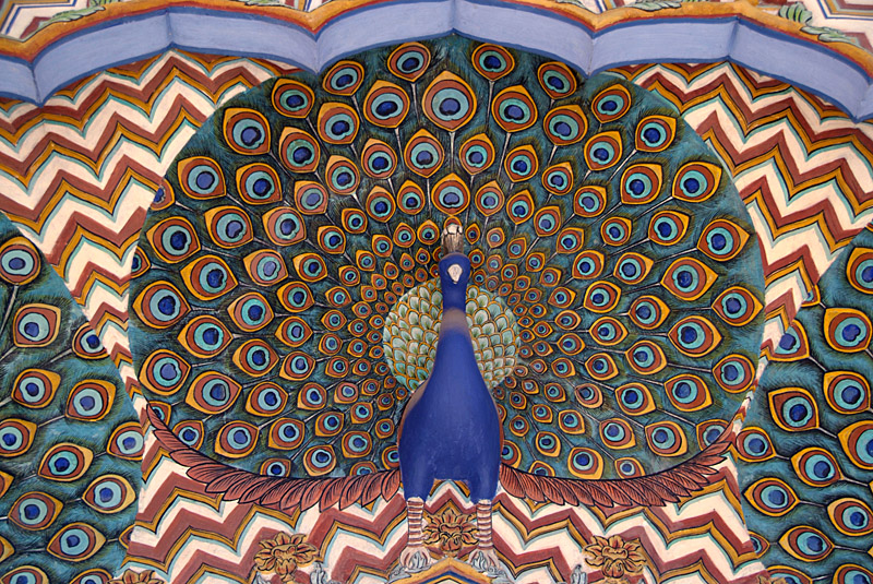 Peacock Detail  - City Palace