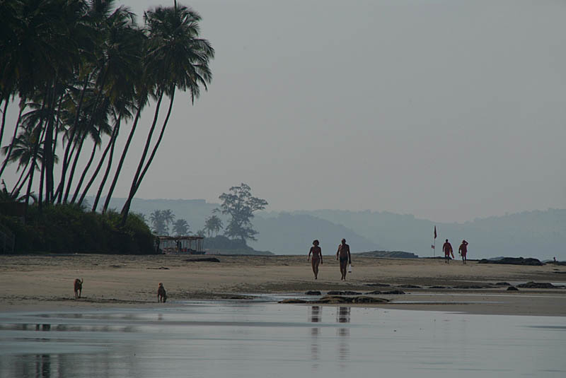 Along the Beach North Goa 02