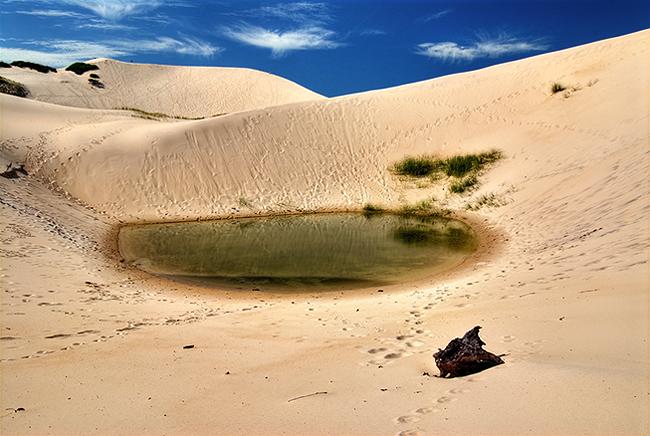 dunas siriu