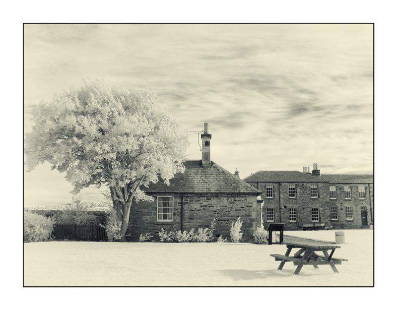 Garden in Blackness Castle