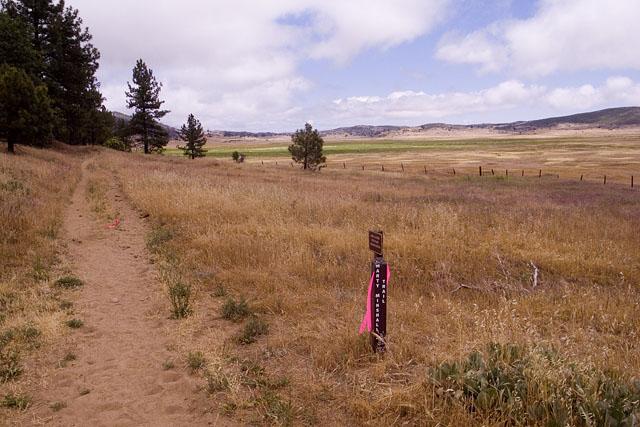 17 Towards Lake 1.jpg