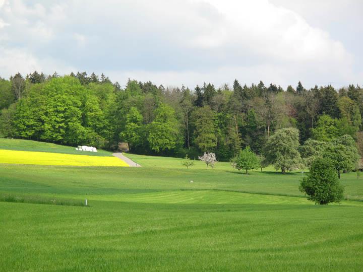 Heitersberg 4.jpg