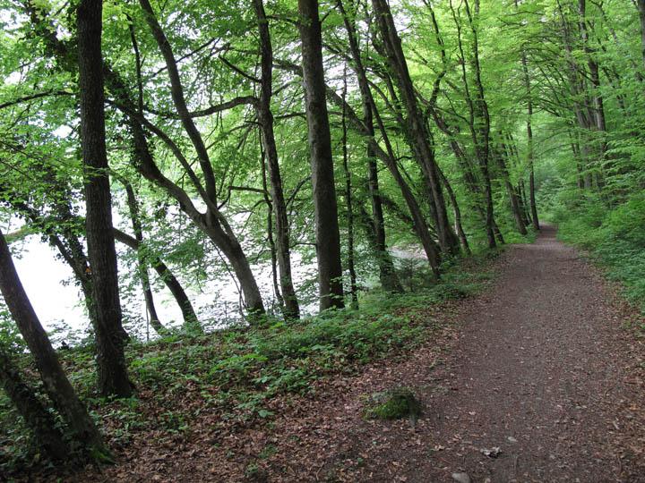 Reuss Trail.jpg