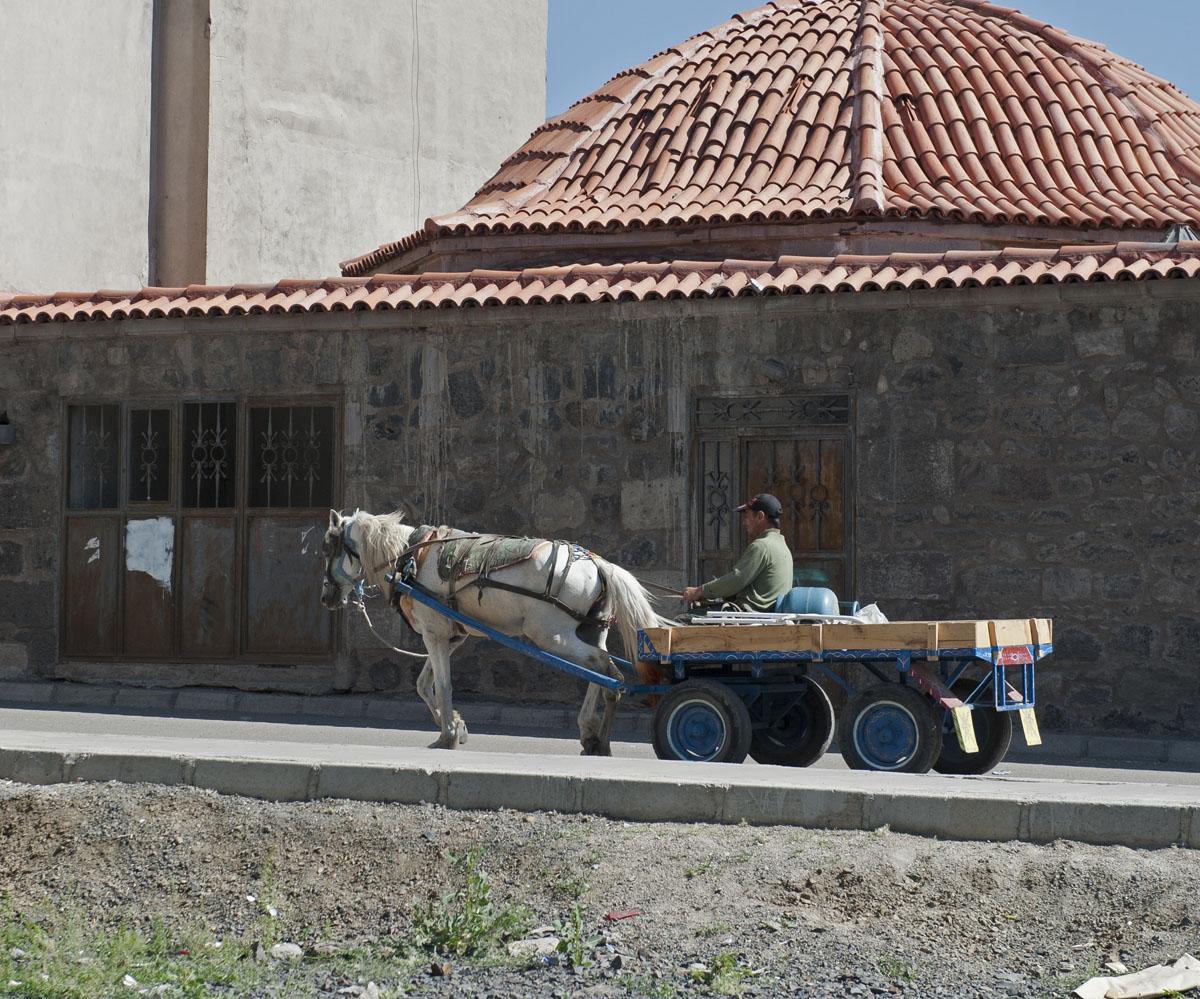 Erzurum june 2011 8619.jpg