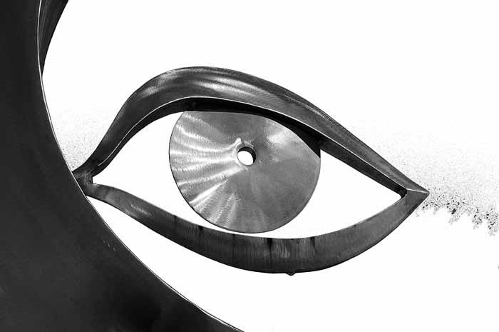 Steeled Eye