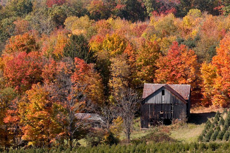 Fall 09 Ridge Barn