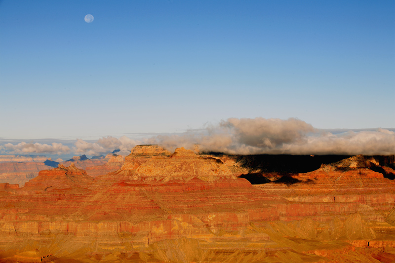 Moon over the canyon.jpg