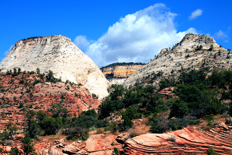 White Cliffs above Red rock.jpg