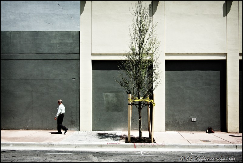Miami Avenue
