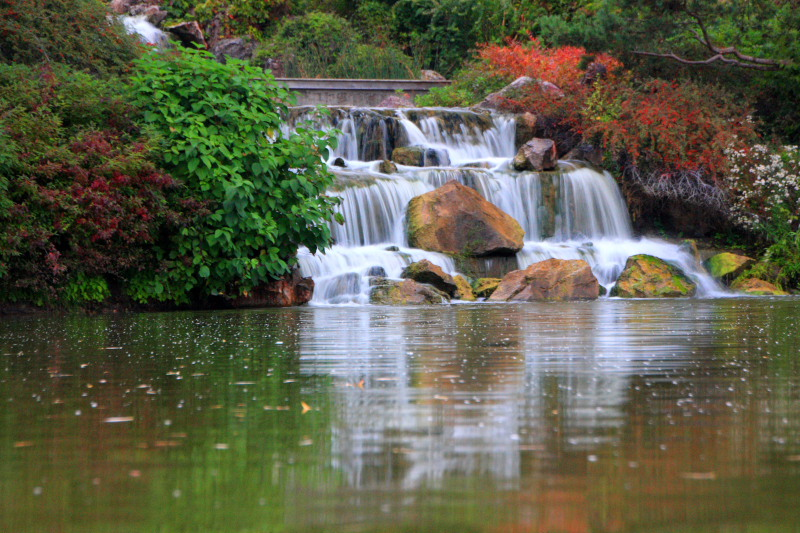 Waterfalls from the Japanese Garden, Chicago Botanical Garden