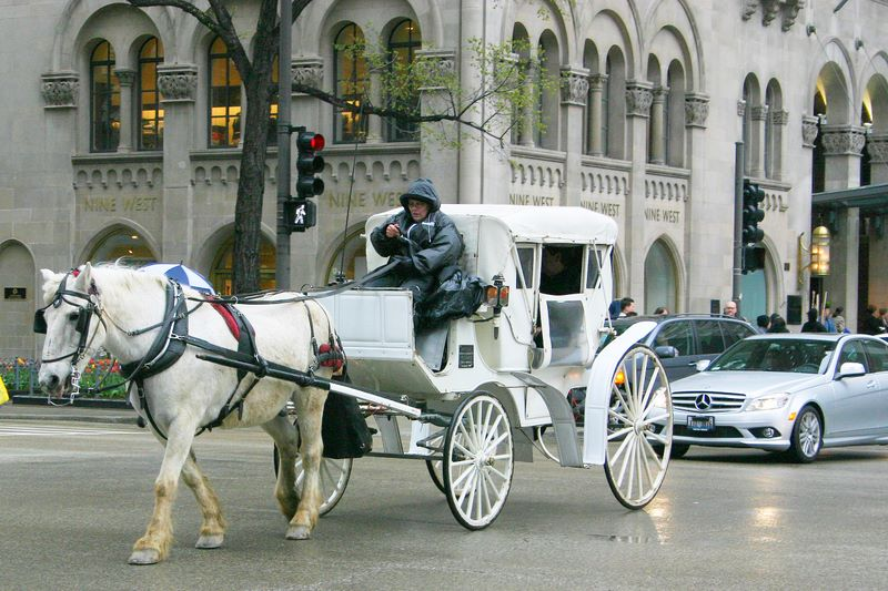 A Hansom cab ride through Michigan Ave., Chicago