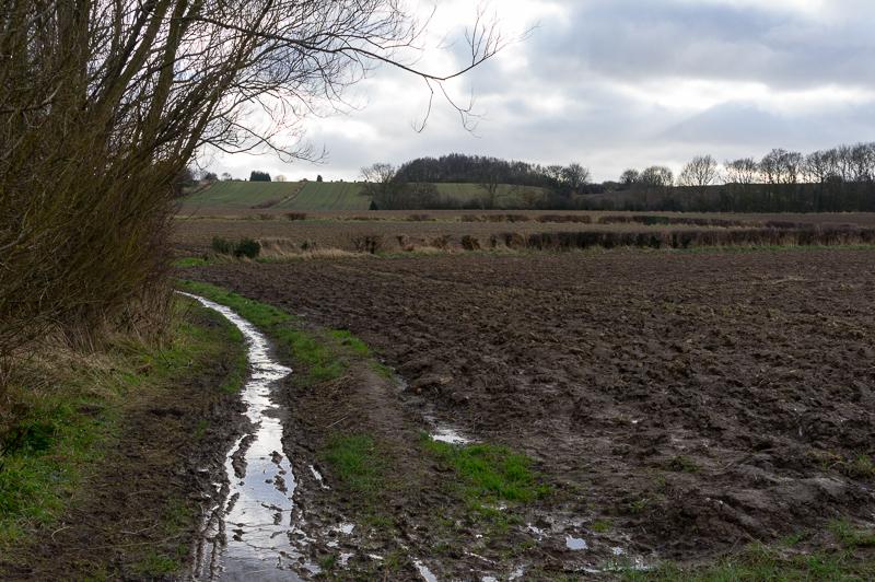 8 February: Mud!