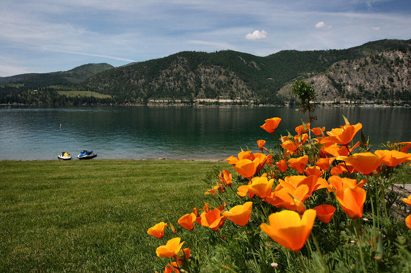Lake Chelan from Willow Point Park