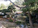 Imperial Palace - gardens #2