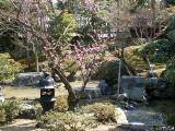 Imperial Palace - gardens #3