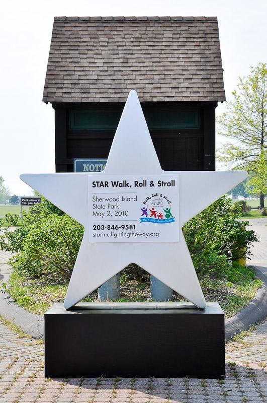 starwalk2010-2.jpg