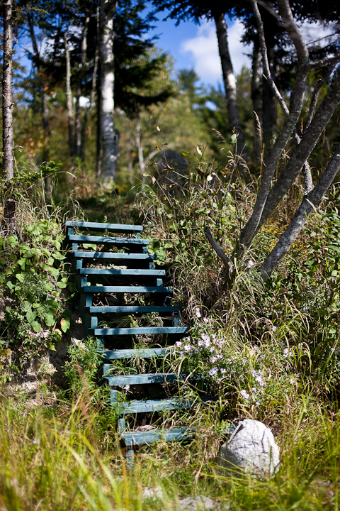 Steps Leading to Nature Trail from Beach