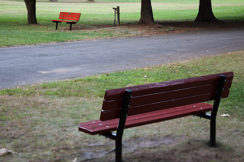 Childs Park Benches Variation