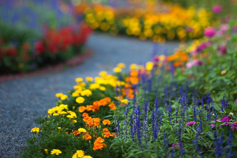 Childs Park Garden Path