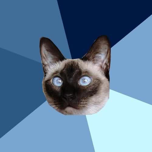 chronic illness cat blank.jpg