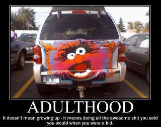 animal on mini van  adulthood