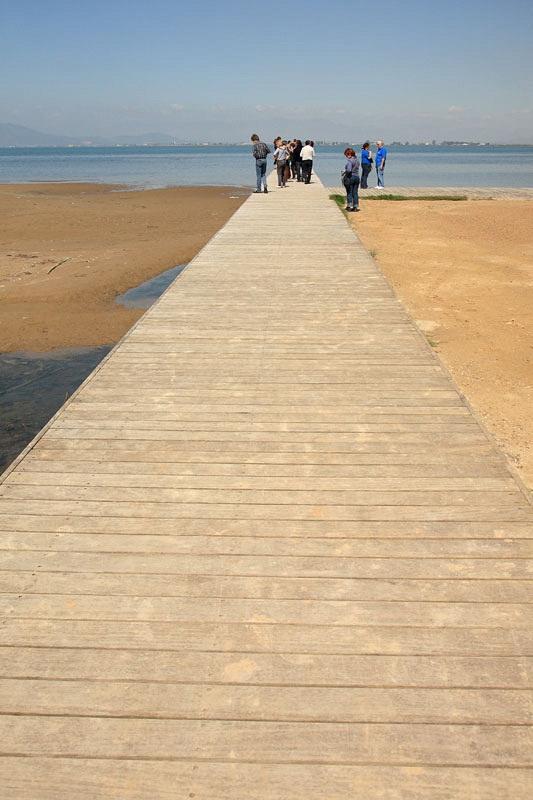 Pier pomol_MG_7907-11.jpg