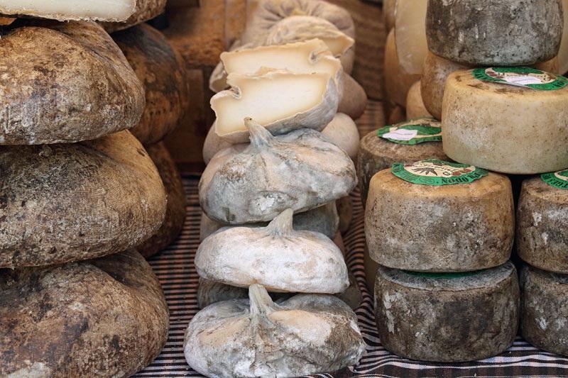 Cheese sir_MG_8600-11.jpg