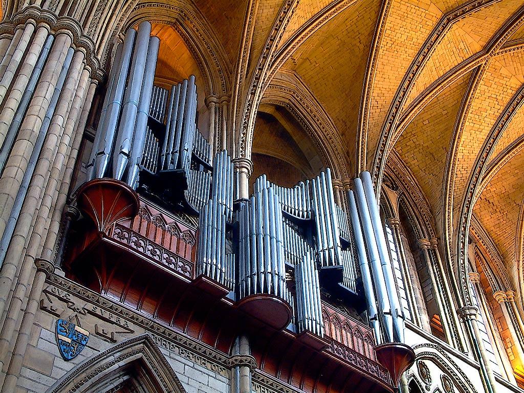 Organ pipes, Truro Cathedral, Cornwall (3055)
