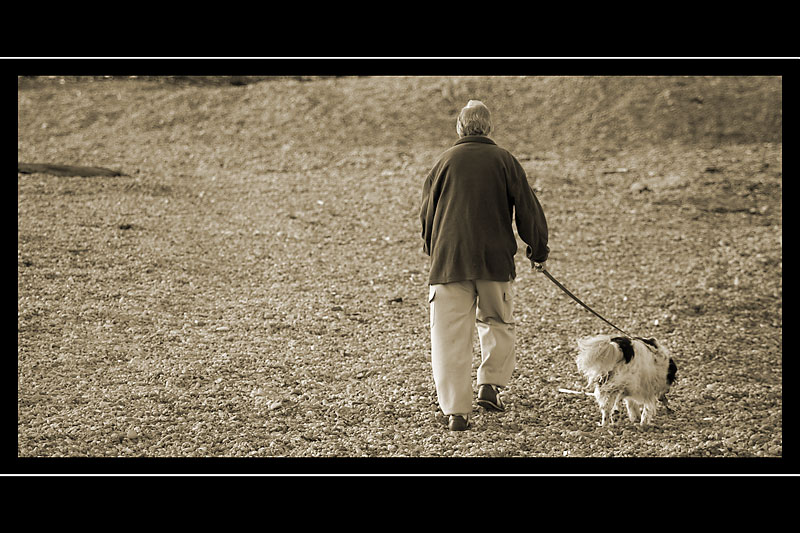One man and his dog, West Bay, Dorset