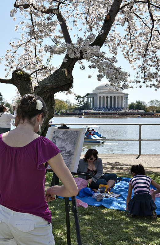 Cherry blossom time again