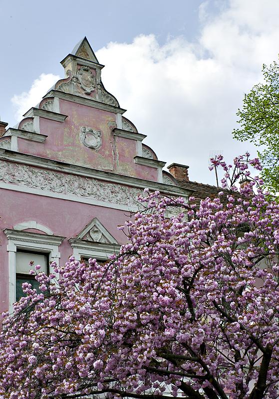 Szentendre in spring