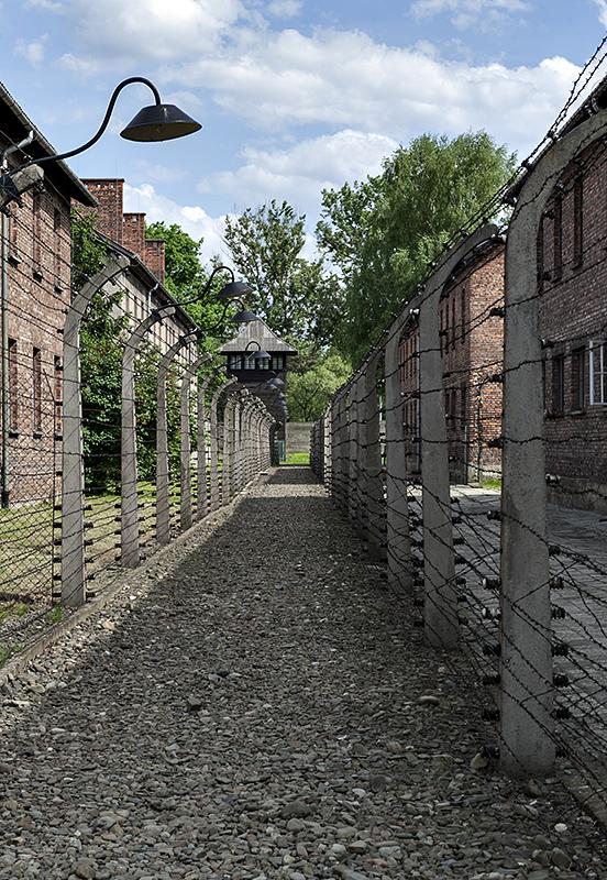 Auschwitz 1, electrified
