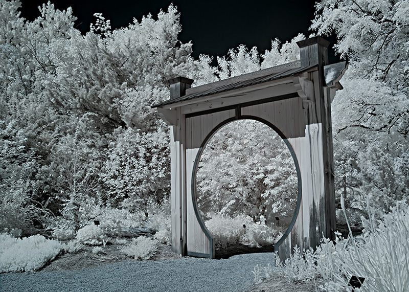 Moon Gate 1 Infrared