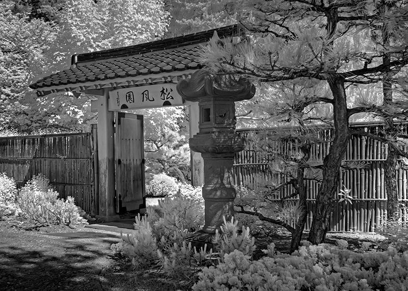 Japanese Gate Infrared