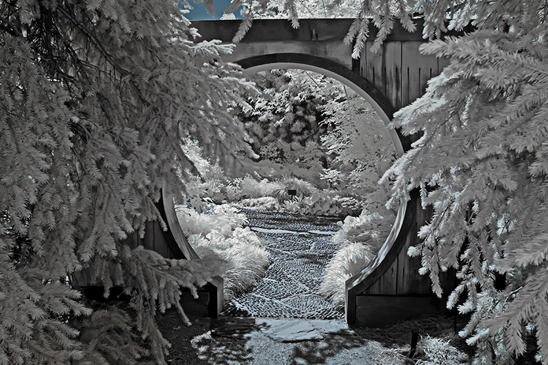 Moon Gate 2 Infrared