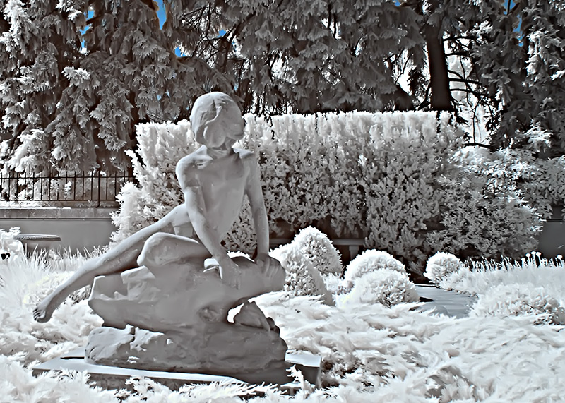 Garden Sculpture Infrared