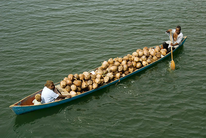 Laden with coconuts, Tetemare
