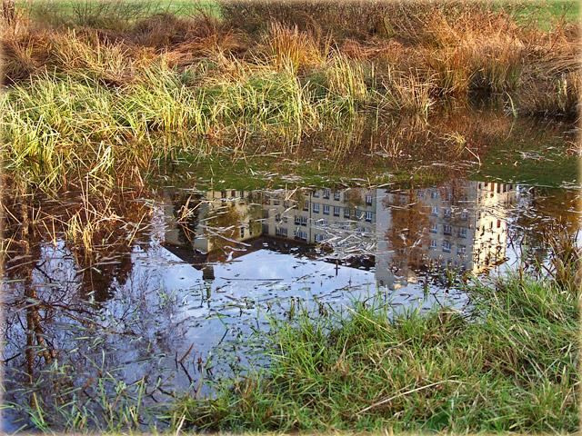 herstliche Spiegelung / autumnally reflections