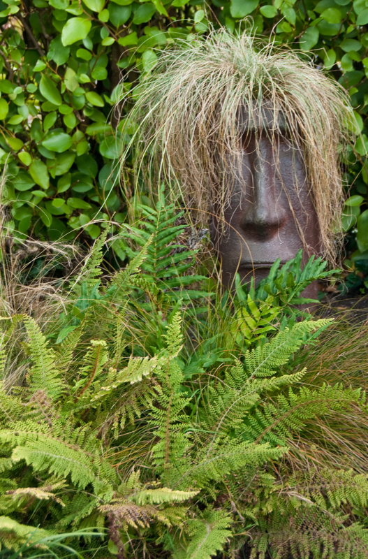 Scowling among the ferns