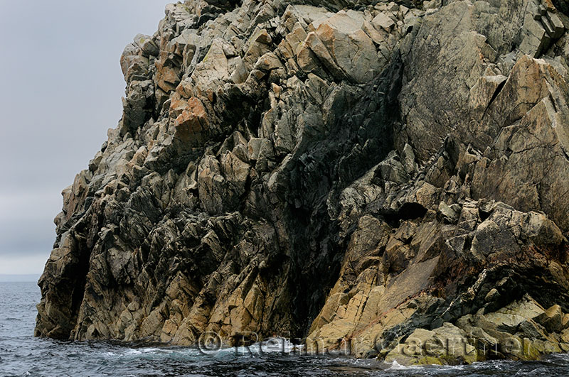 Jagged ancient rocks cliff face on the Atlantic coast of Twillingate Island Newfoundland