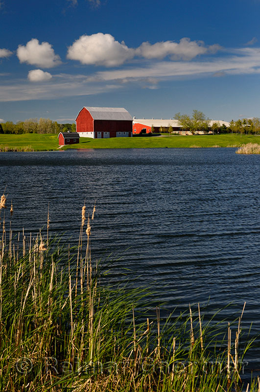 236 Barn with Pond.jpg