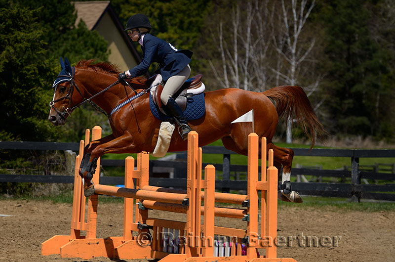 269 Horse Jumping 9.jpg