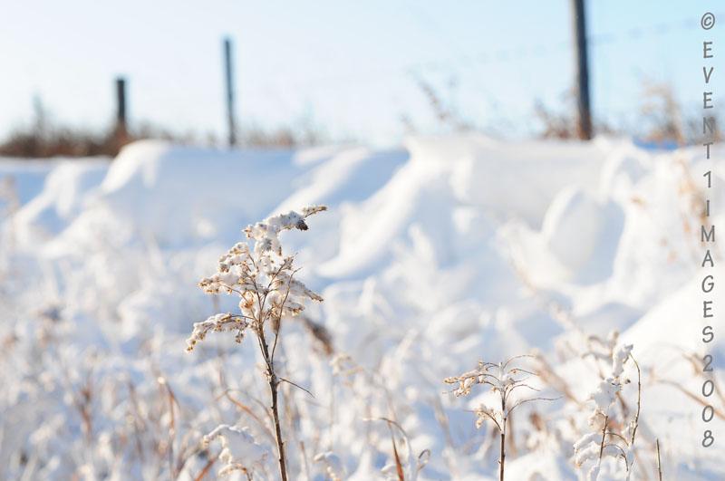 Es Ist Kalt In Saskatchewan