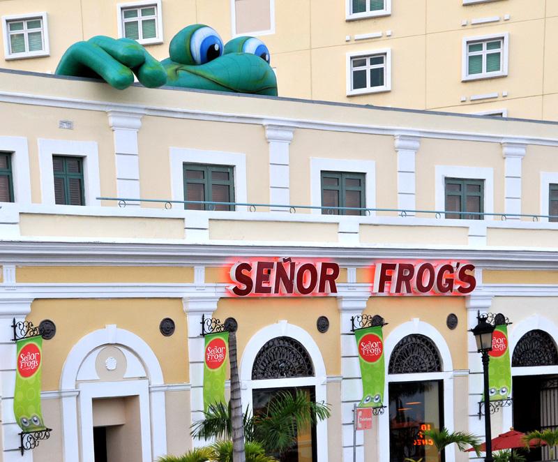 Señor Frogs restaurant!