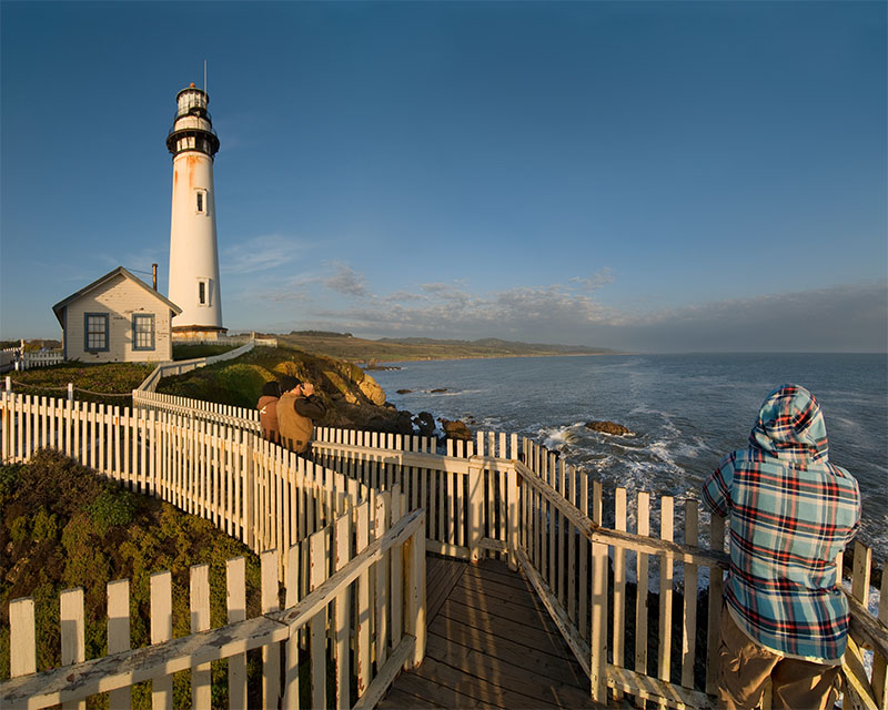 Whale Watching At Pigeon Point