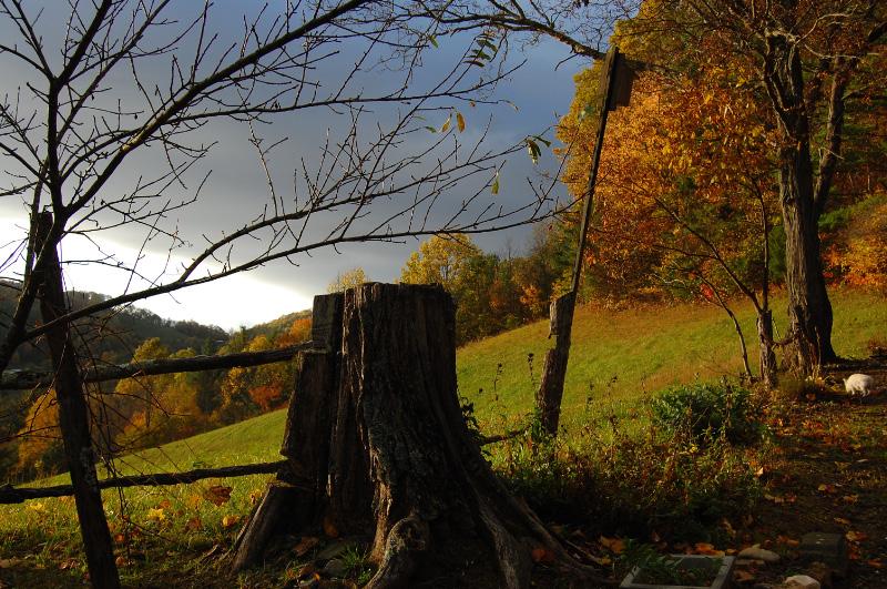 Carolina hillside