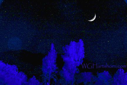 Sierra Starlight Glow